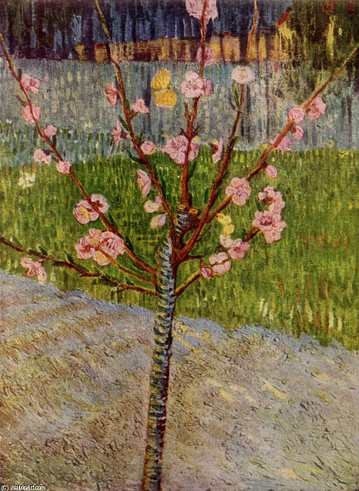 famous painting Almond Tree in Blossom of Vincent Van Gogh